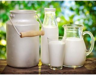 Минсельхоз прогнозирует увеличение производства молока в 2019 году на 500 тыс. тонн