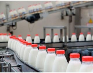Экспорт молочной продукции из России к 2024 году может вырасти почти в три раза